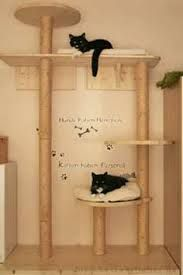 die besten 25 hundebox selber bauen ideen auf pinterest. Black Bedroom Furniture Sets. Home Design Ideas