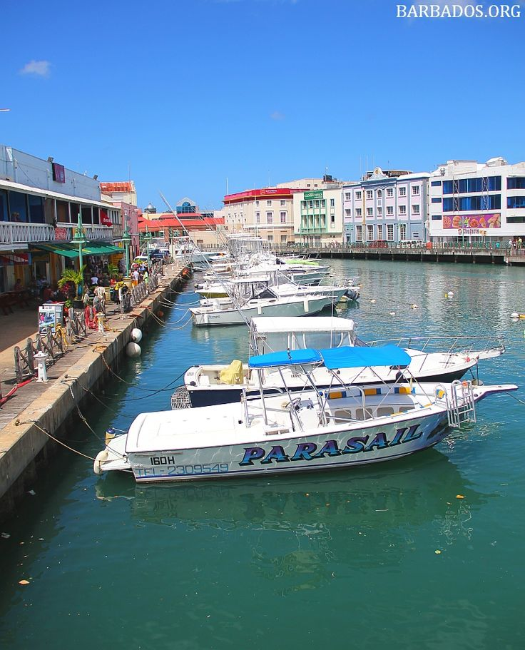 Stop for a quick lunch or refreshing drink at the waterfront in Bridgetown.