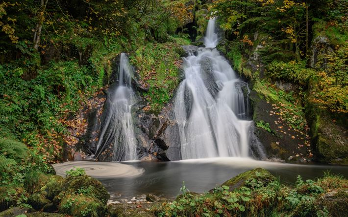 Descargar fondos de pantalla Twin Falls, una cascada, lago, bosque, otoño, Bosque Negro, Baden-Wurttemberg, Alemania