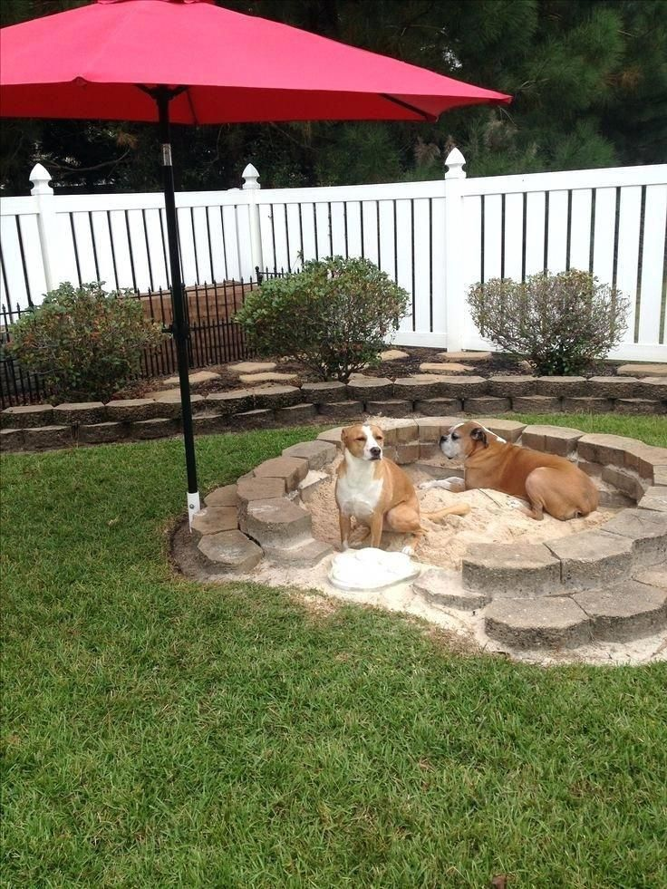 Backyard Ideas For Dogs Best Dog Friendly Backyard Ideas On Dog