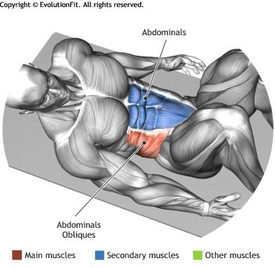 ABDOMINALS -  CRUNCH WHITH HEEL TOUCH