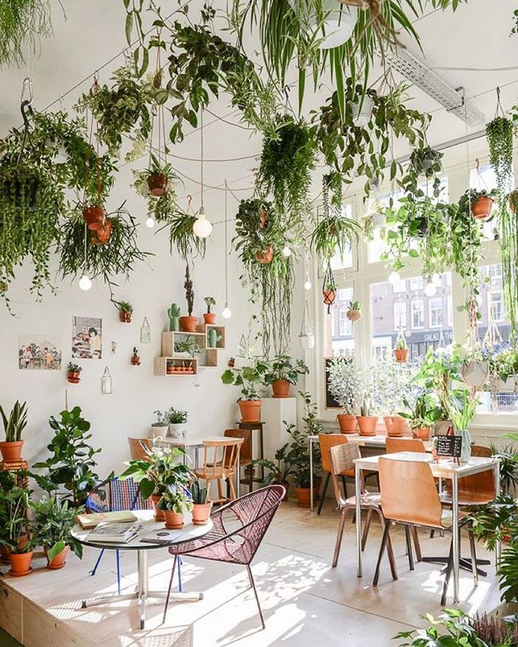 Woah Now Hereu0027s A Dream Office! All That Natural Light And Plant Life! /  Via By Femmeandfortune