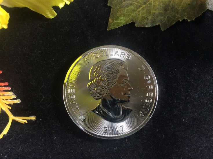 2017 Canadian 5 Dollar Elizabeth II Lynx .9999 Fine Silver Coin Priced at $19.99 available at Gadgets and Gold!