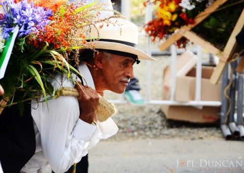 Feria de Las Flores: Experience Medellins Flower Festival in Photos
