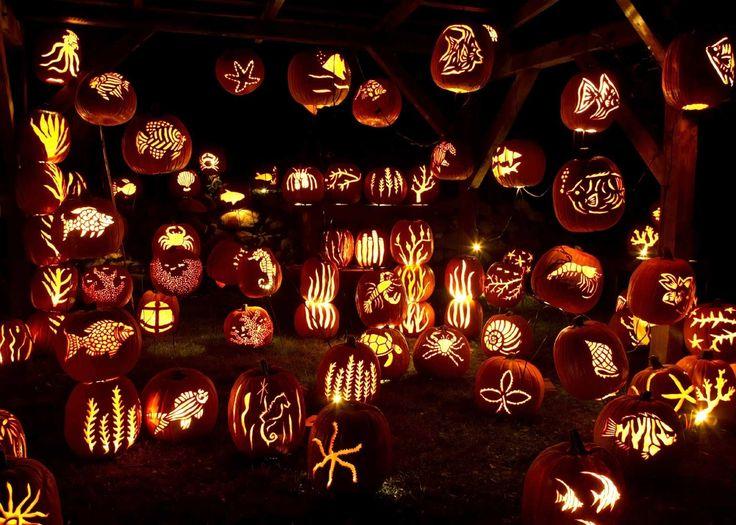 Сложные и в то же время красивые узоры из тыквы. #Хэллоуин #Helloween  #оформлениехэллоуина #страшныйхеллоуин #фонарьджека #Хеллоуин #оформление #декор #дизайн #банкет  #флористика #композиция