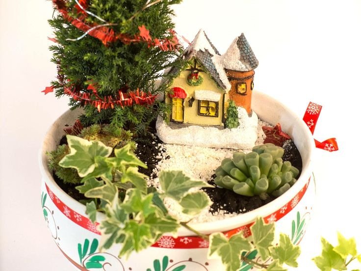 Winter fairy garden https://www.facebook.com/VegartDesign