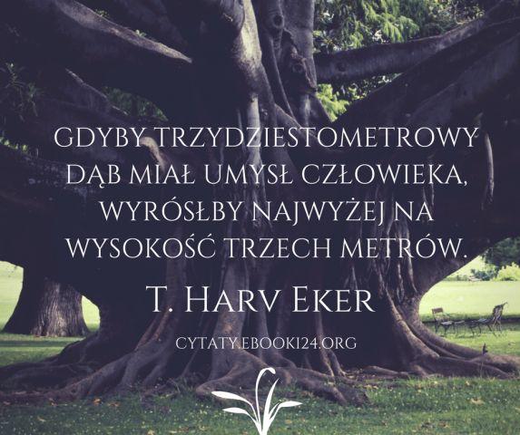 T. Harv Eker cytat o umyśle człowieka