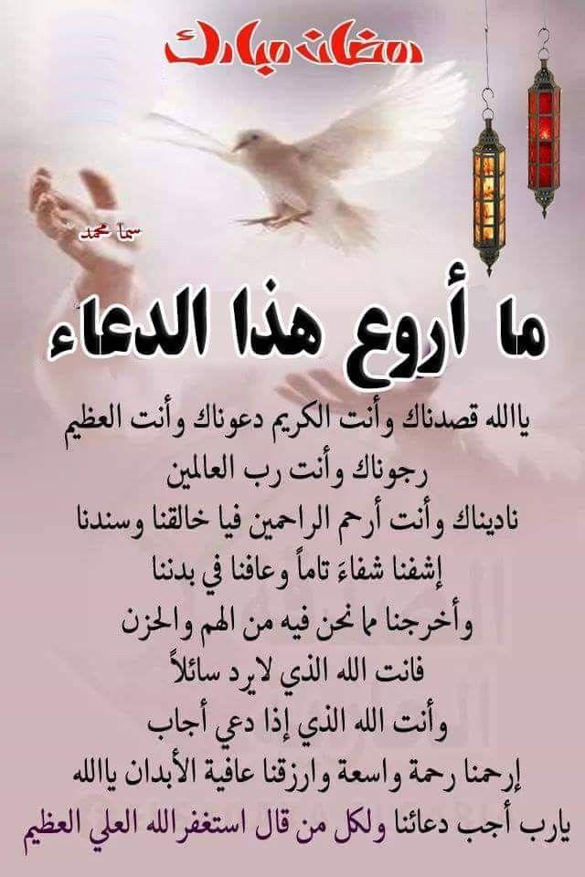 استغفر الله العظيم واتوب اليه Quotes Motivational Quotes Arabic Words