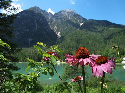 Lago di Dobbiaco    #TuscanyAgriturismoGiratola