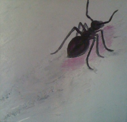 The Ant  By Charisma Cam