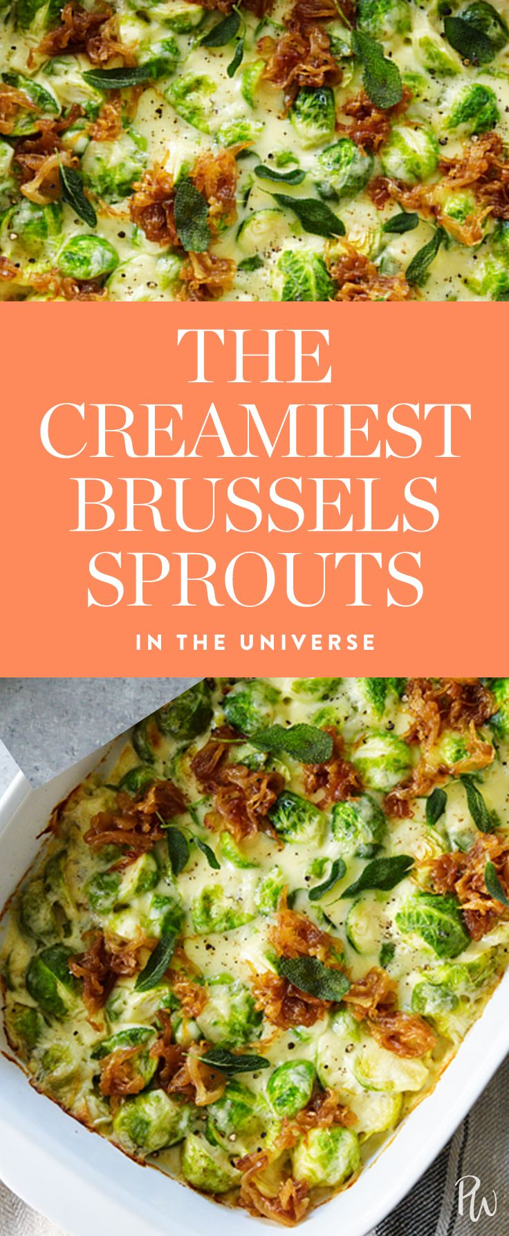 Meet the creamiestbrussels sprouts in the universe. Our favorite green meets comfort food in one of the best side dishesever created. Get the recipe here. #brusselssprouts #veggies #easyrecipes #vegetarian #sidedish #cheese #cheesy #brusselspoutrecipes