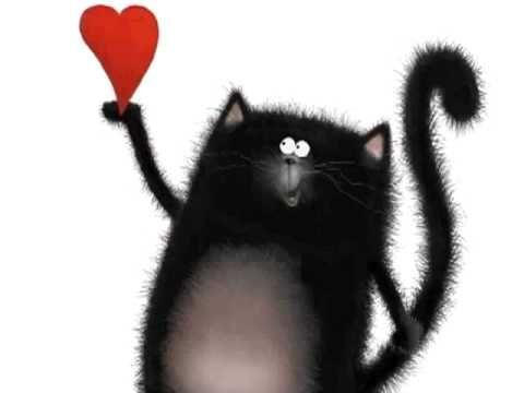Love, Splat - YouTube