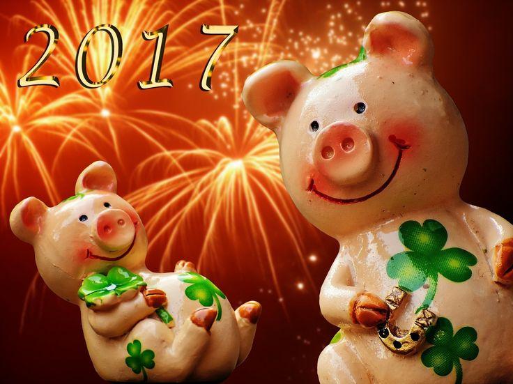 Magazín :: Mojinterier :: Šťastný nový rok 2017!