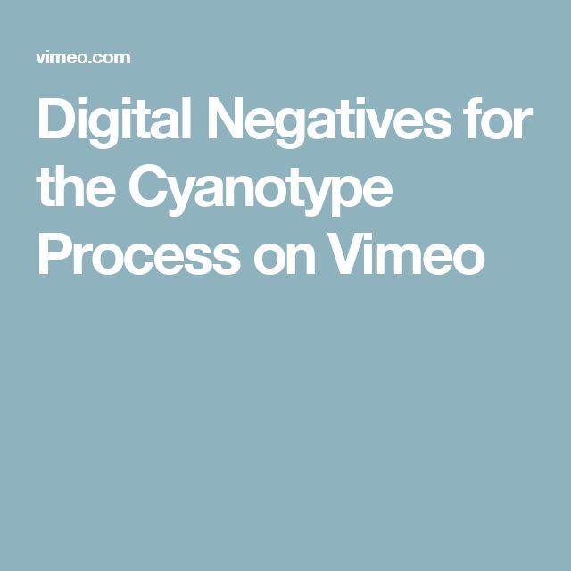Digital Negatives for the Cyanotype Process on Vimeo