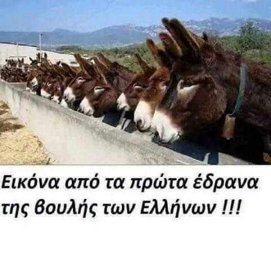 Καλημέρα στούς πολιτικούς μας. - georgios aktipis - Google+