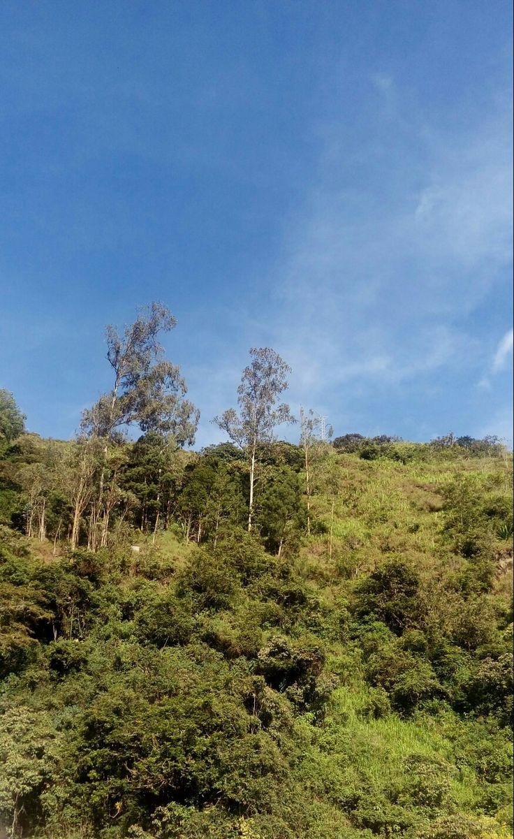 Junín, Cundinamarca, Colombia
