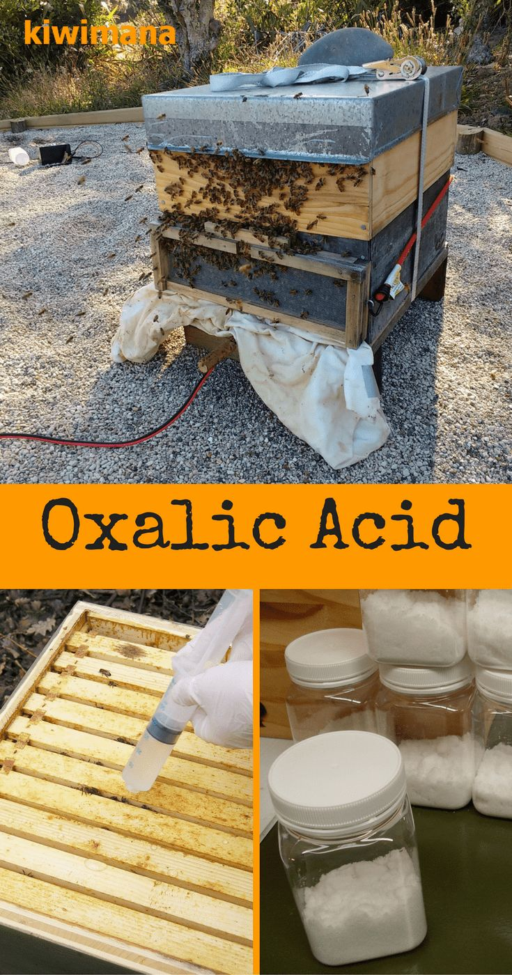 "Oxalic Acid is used in many ways, in the fight against the ""Varroa Destructor Mite"" - which feeds on Bees. Oxalic Acid is considered an organic varroa treatment. via @kiwimana"