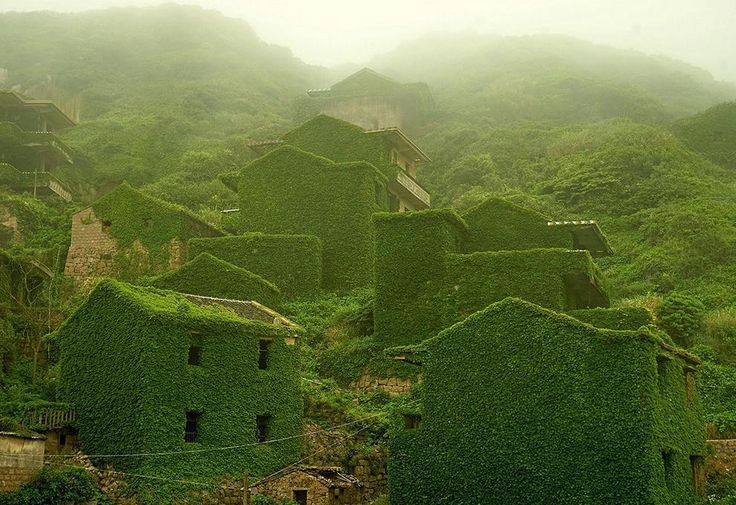 Shengsi is an archipelago of almost 400 islands at the mouth of China's Yangtze river. In there we can find this awesome abandoned fishing village being swallowd by nature. The pictures are taken by ZhouJie  #abandoned #china #nature #architecture