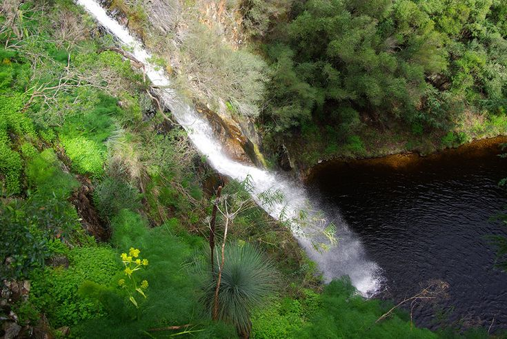 10 Walking and Hiking Trails in and Around Adelaide Walking when travelling is a great way to make sure you stay fit, get some fresh air, and explore a new city or area. South Australia is known for its incredible natural landscapes, and Adelaide is home to many walking and hiking trails that are sure to satisfy any traveller. Let's look at ten of …