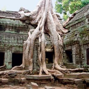 Cambodja - Angkor Wat  (Siem Reap - Cambodja)