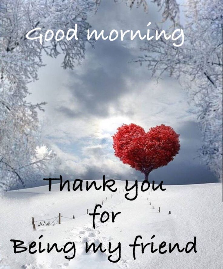 You are such a wonderful blessing in my life, a very special friend to me! My love, hugs, prayers and blessings to you.  XOXO's