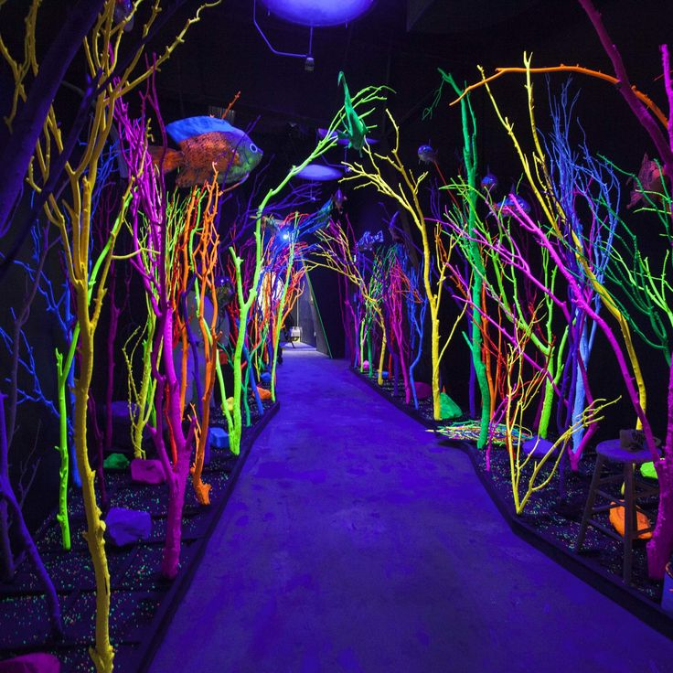 This 20,000-square-foot psychedelic funhouse is America's craziest new destination. Santa Fe, New Mexico