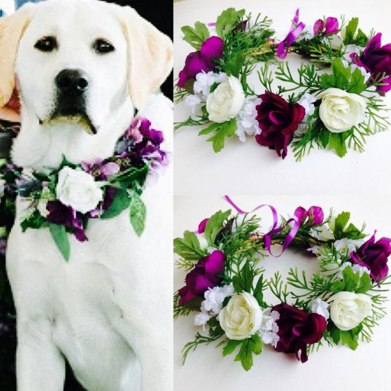 Beautiful and stylish dog, puppy flower crown. This Dog flower crown is handcrafted with artificial silk flowers in white and ivory with vibrant purple rose blooms - the blooms measures 1.5 to 2 inches in diameter the width of the crown is appx 3 inches including greenery .Created with wired base made completely adjustable for easy fit And comfort .One yard of ribbon completes the finishing touch .  Small crown 8-12 inch , Medium crown 12-15 inches Large 16 -20 Inches Add more flowers For…