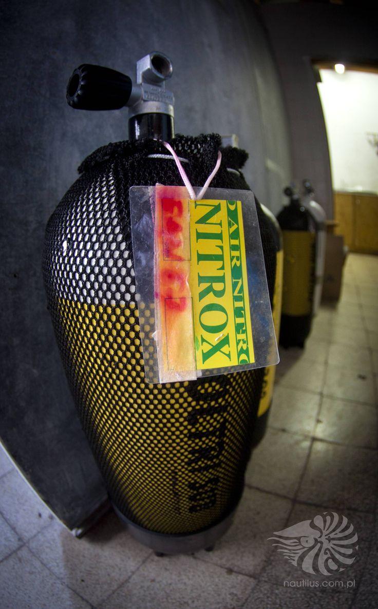 www.nautilus.com.pl #nurkowanieChorwacja #kursynurkowania #bazanurkowa #zakwaterowanieChorwacja #apartamentyChorwacja #rejsypoAdriatyku