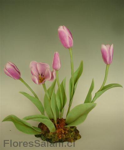 Tulipanes rosados. | Flores Salahi