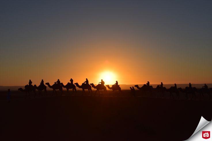 Deze prachtig warme foto is van Nieuw Talent Xiq! 😍 De compositie met de zonsondergang zorgt voor mooie silhouetten van de reizigers in de woestijn in Marokko.   Welkom bij Zoom.nl, Xiq!   Bekijk meer reisfoto's van Xiq, op: http://xiq.zoom.nl/