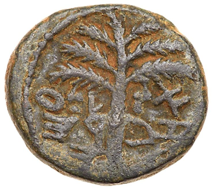 Judaea, Bar Kokhba Revolt. AE Small Bronze (5.16 g), 132-135 CE VF Undated, attributed to year 3 (134/5 CE). 'Eleazar the priest' (Paleo-Hebrew), seven-branched palm tree with two bunches of dates. 'For the freedom of Jerusalem' (Paleo-Hebrew), bunch of grapes with branch and small leaf. Mildenberg 155 (O4/R4); TJC 300. A choice example for this scarce undated issue. Green patina. The Brody Family Collection; Purchased privately from Superior, August 1988. This undated small bronze…