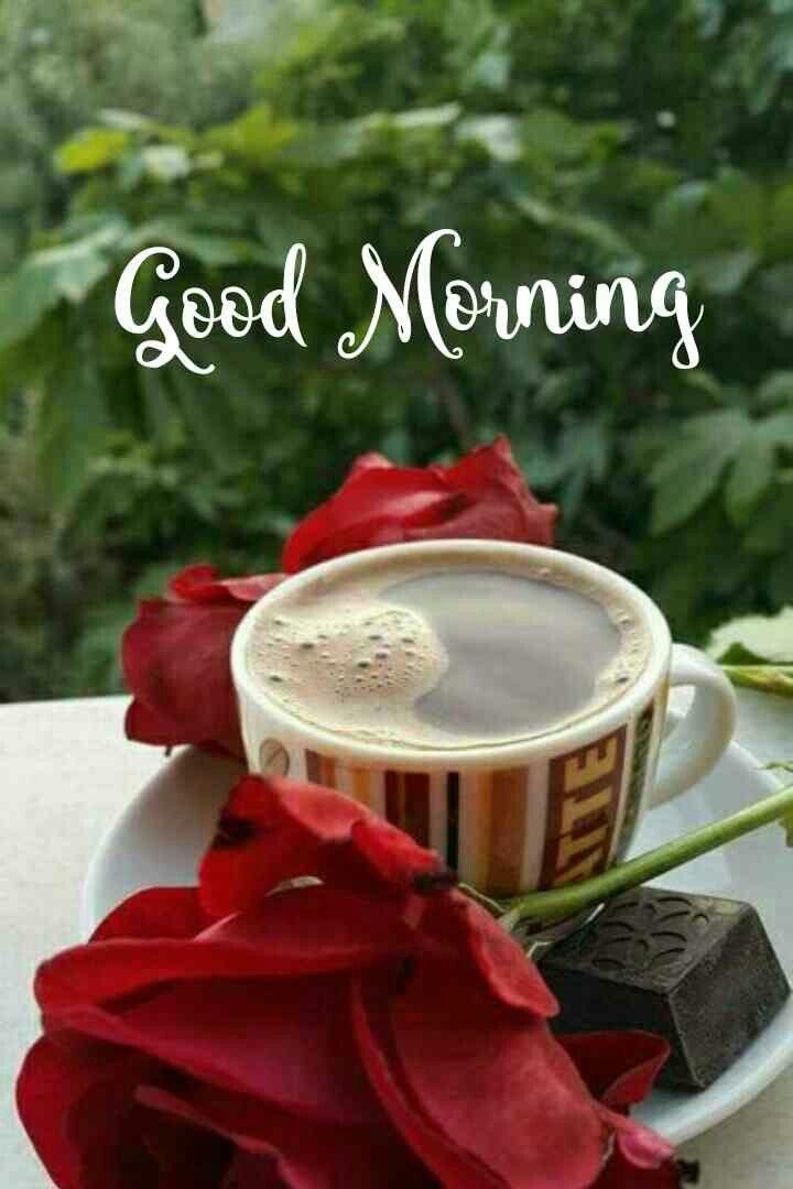 Good Morning Images Good Morning Flowers Good Morning Wallpaper Good Morning Massage