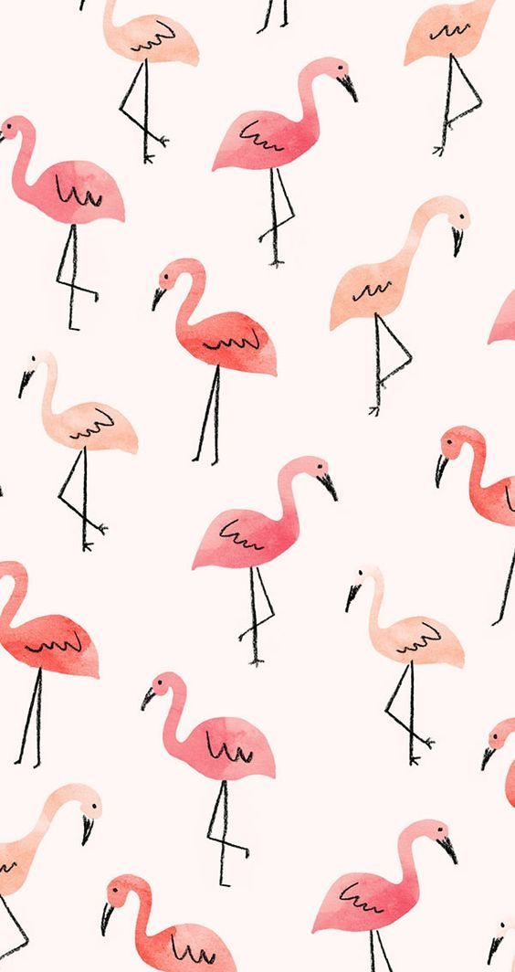 iPhone or Android Flamingos background wallpaper selected by ModeMusthaves.com