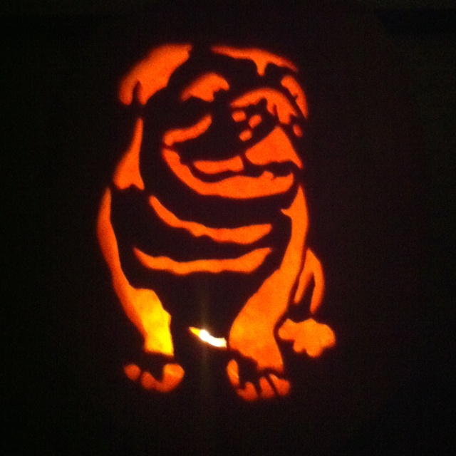 bulldog pumpkin stencil the gallery for gt bulldog pumpkin stencil 9454