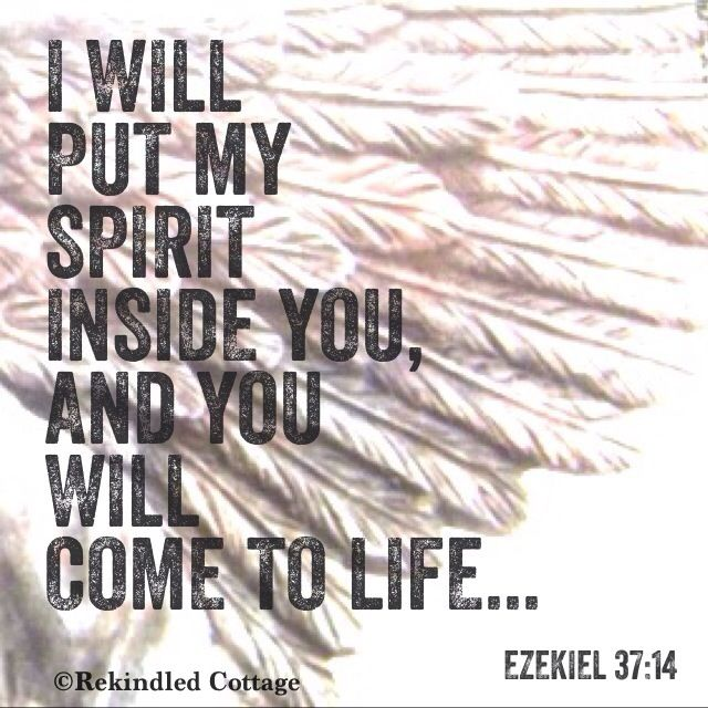 Ezekiel 37:14  Related pins = http://www.pinterest.com/knowingjesus/pins/A Promise from Almighty God