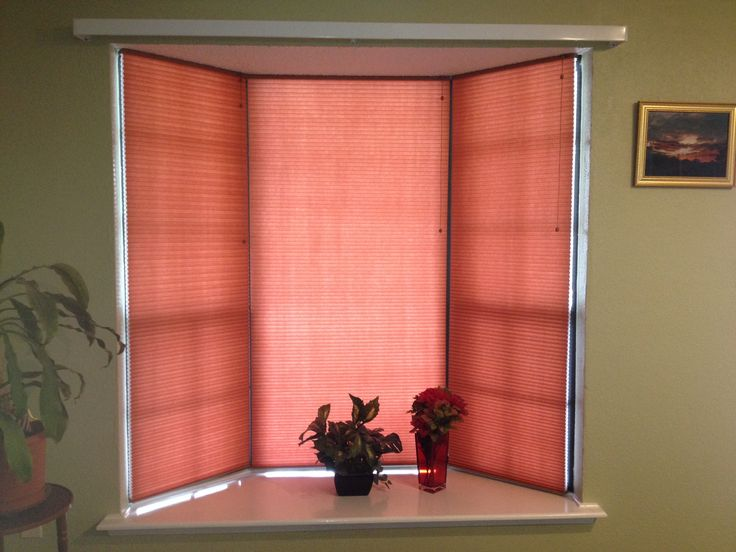 light filtering cellular shades in coral