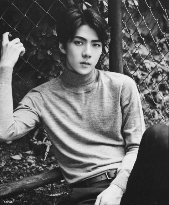 SEHUN  //  2016 EXO CALENDAR