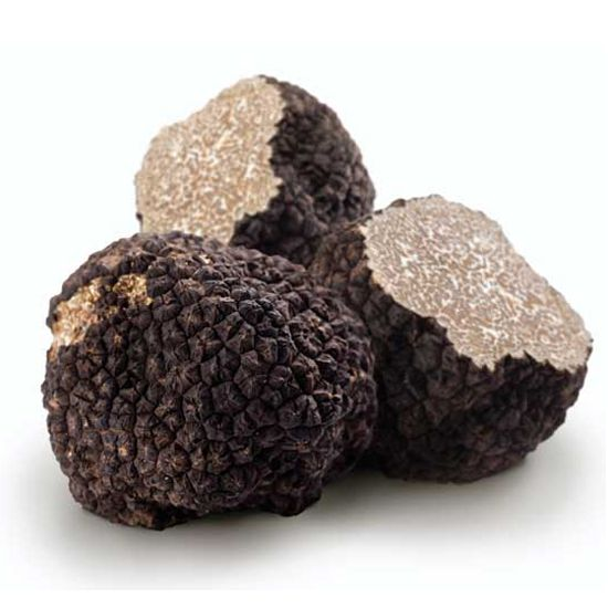 How to Grow Truffles in North American--Learning how to grow truffles isn't as difficult as you might think, but it sure does take a lot of patience — and a good dog.