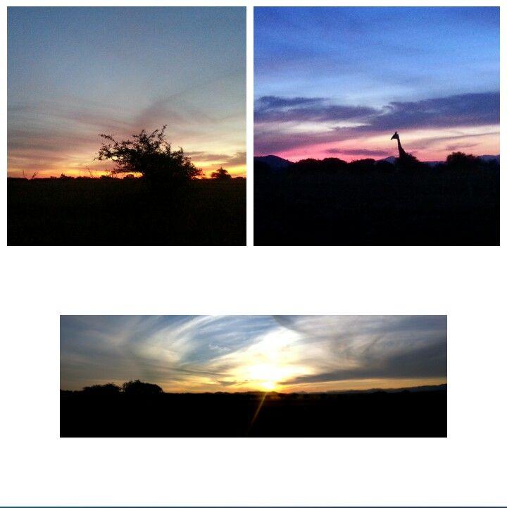 African Sunset @ Zebula Lodge