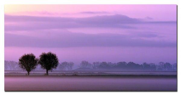 This morning... Door communitylid rinus64 - NG FotoCommunity ©