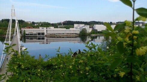 University campus summer 2014.