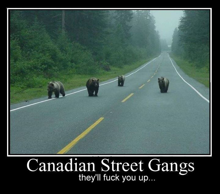 Canadian Street Gangs ;)