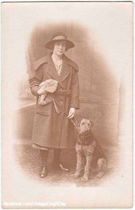 Lady Hat/Purse with Airedale Terrier, c.1920 Origin: UK Format: Postcard
