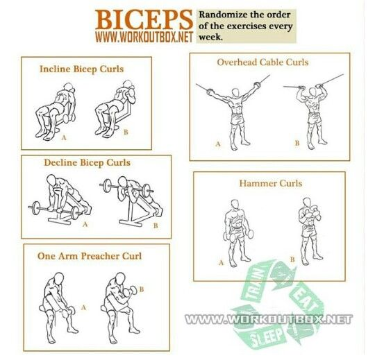 Biceps Work Out Chart | New Calendar Template Site