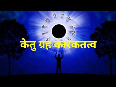 nadi astrology in hindi
