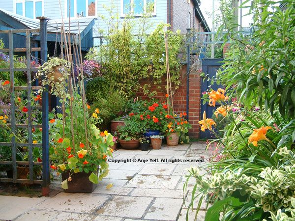 1000 Images About Gardening Back Yard Ideas And That