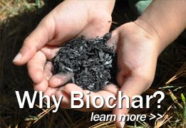Use of biochar in greenroof growing mediums. Could be useful in areas with intermittent rain events. Would need to figure additional water weight in live load capacity. Snow on waterlogged biochar could be extra heavy.