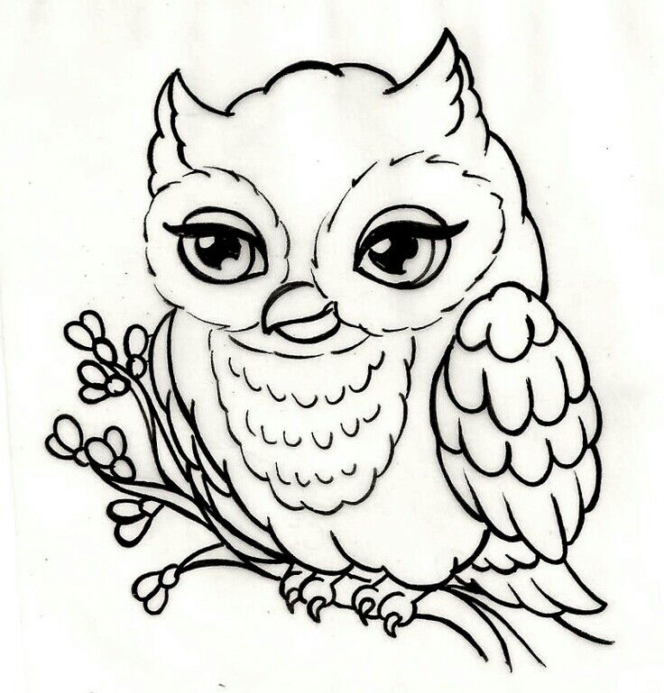 tattoo owl coloring pages - photo#16