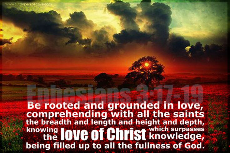 Be rooted and grounded in love.. Eph 3:17-19