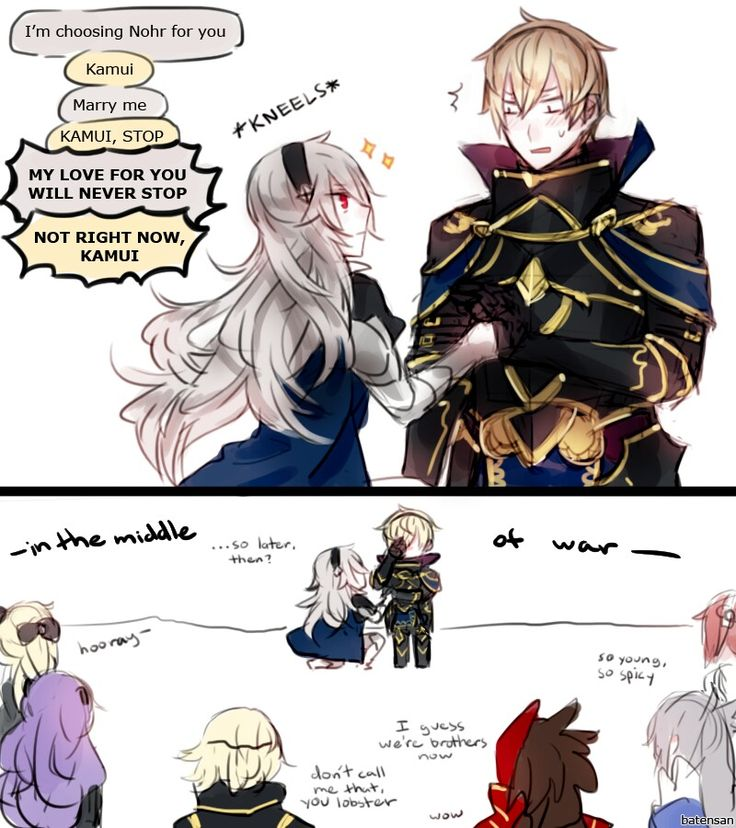 Fire Emblem If. Kamui and Leon (and Elise, Camilla, Marx, Ryoma, Takumi, and Sakura too). My love for you will never stop